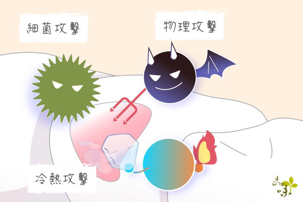牙齒不舒服通常是由細菌感染、物理性、或冷熱所影響