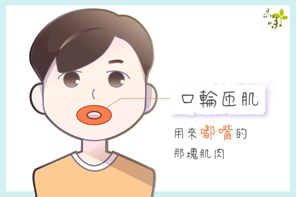 口輪匝肌是只用來嘟嘴的那塊肌肉