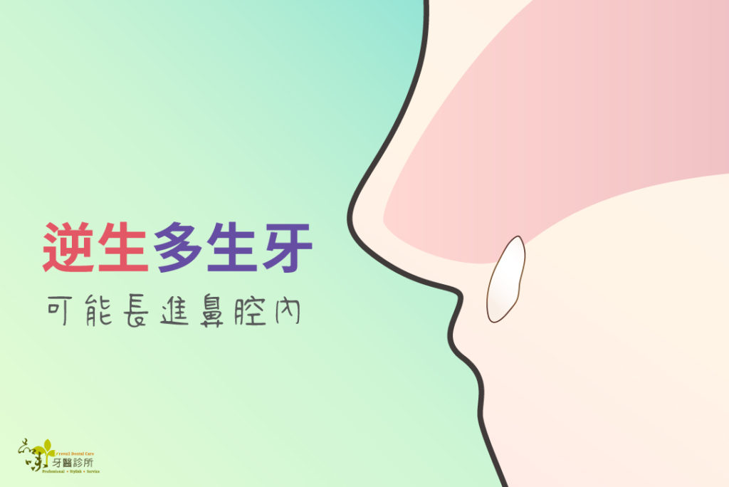 多生牙長進鼻子的側面剖面圖